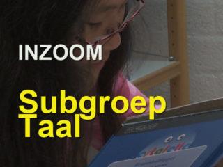 inzoom-3-subgroep-taal