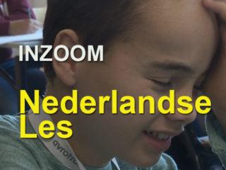inzoom-7-nl-les